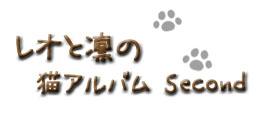 レオと凛の猫アルバム Second